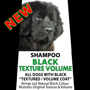 Black Texture Volume Shampoo - 5,000ml (20 Litre diluted) Spanish Water Dog, Poodle, Newfoundland, Lagotto Romagnolo, German Spitz